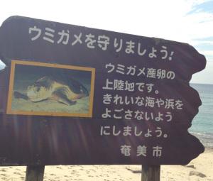 ウミガメ守ろう看板