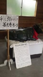 ゲッカヨ編集部ろぐ-110605_1150~010001.jpg